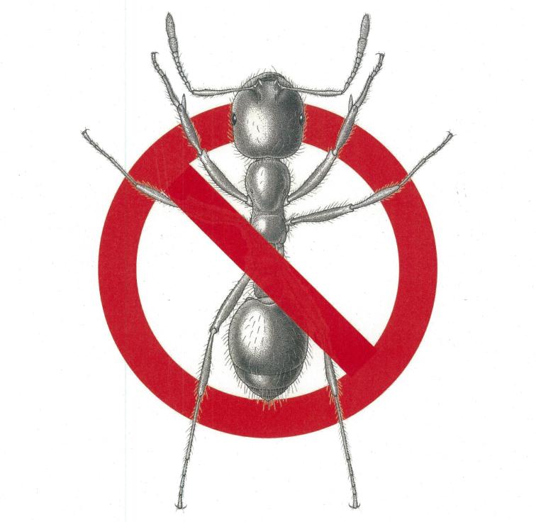 【日本でも増殖か?】ヒアリの駆除方法と刺された場合の対処方法は?