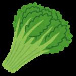 病み上がりにおすすめの食べ物 春菊